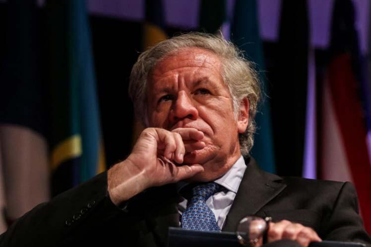 México y latinoamérica manifiestan que la gestión de Almagro en la OEA es de las peores en la historia